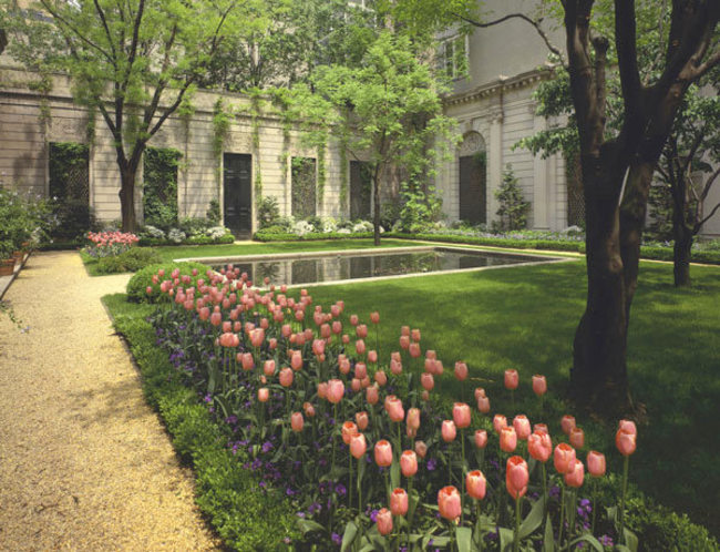 Restoring the 70th Street Garden at the Frick