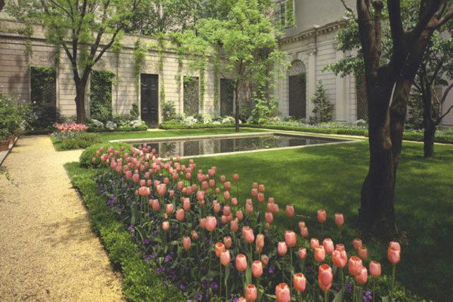 06_Garden70st_tulips_WEB