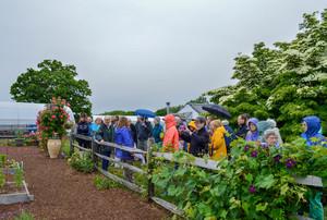 White Flower Farm Members' Event