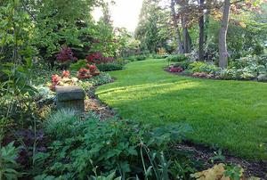 Garden of Stewart Dempsey