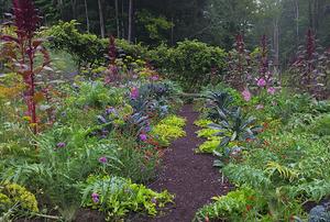 Garden of Helen Bodian