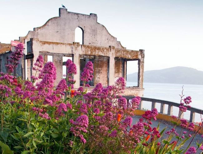 Outstanding American Gardens: What are they, where are they, and how can they be saved?