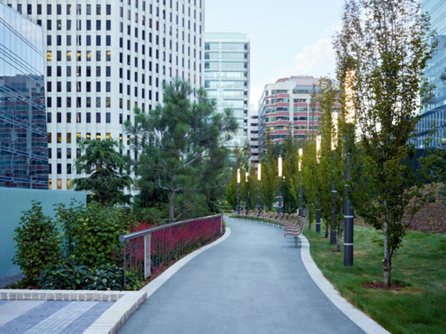 Garden Masters: Salesforce Transit Center Park—A Modern Urban Rooftop Landscape - CANCELED