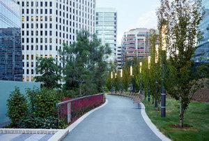 Garden Masters: Salesforce Transit Center Park—A Modern Urban Rooftop Landscape