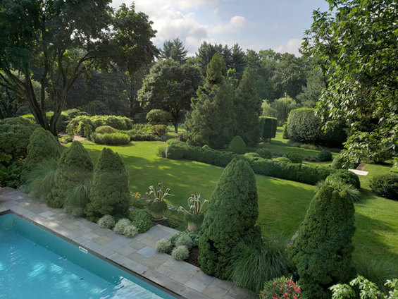 Digging Deeper: Change and Continuity—The Evolution of a Garden - Members
