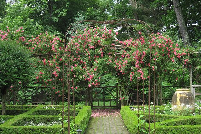Garden Of Bunny Williams Garden Directory The Garden Conservancy