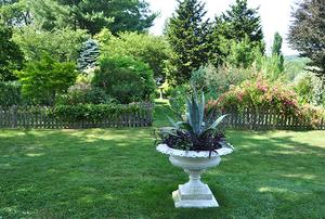 Garden of Peter Wooster