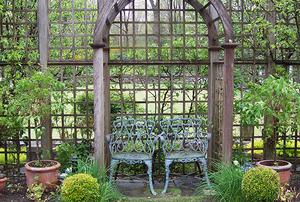 Garden of Phillis Warden