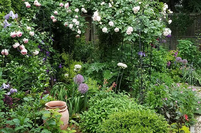 Garden of Linda Marcucci