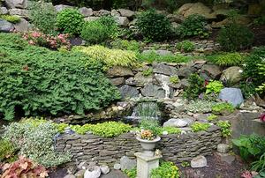 The Sichak's Garden