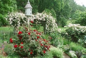 Hays Gardens