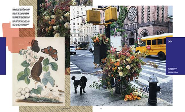 Virtual Talk: Flower Flash with Lewis Miller